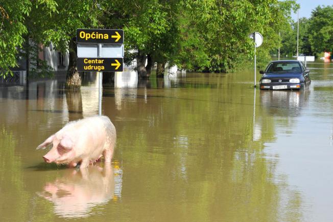 Iz Fonda solidarnosti 17,5 milijuna eura za stradale u poplavama u Hrvatskoj