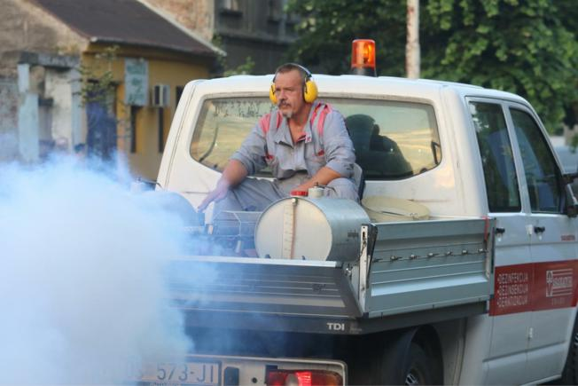 U istočne i sjeverne dijelove grada stigla prva generacija odraslih komaraca